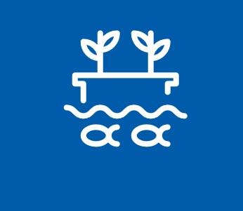 Aquaponik - nachhaltige Versorgung mit Fisch und Gemüse